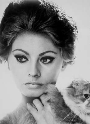 Vintage Photography: Mara with Cat (Sophia Loren) by Vittorio De Sica