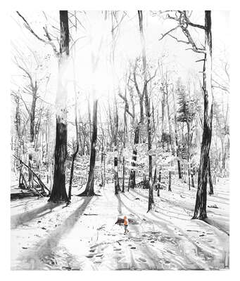Black and White Landscape Prints: Black Forest II by Malgosia Jankowska