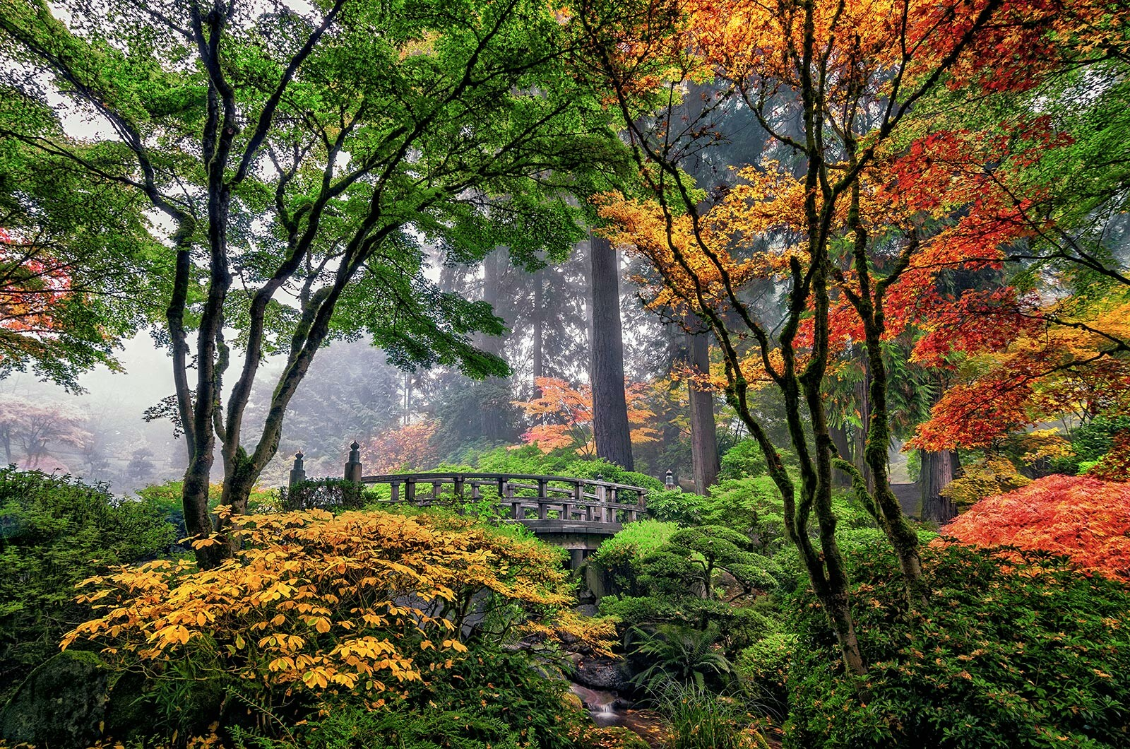 Fall Colors at Moon Bridge by Roman Johnston. Buy pictures &amp ...
