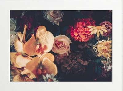 Vintage Flowers by Art Now Collection