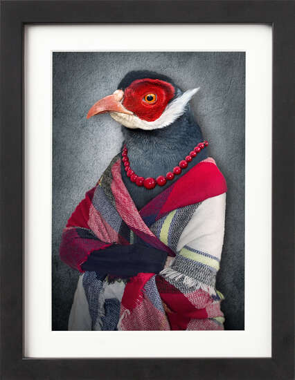 Well Dressed Bird by Art Now Collection