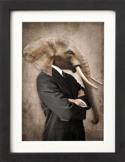 Well Dressed Elephant by Art Now Collection