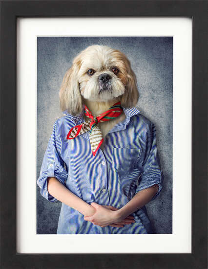 Well Dressed Pooch by Art Now Collection