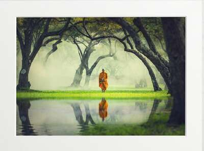 Deep Forest Reflection by Art Now Collection