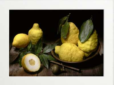 Lemons Still Life by Art Now Collection