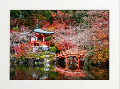 Daigoji Temple in Autumn by Art Now Collection