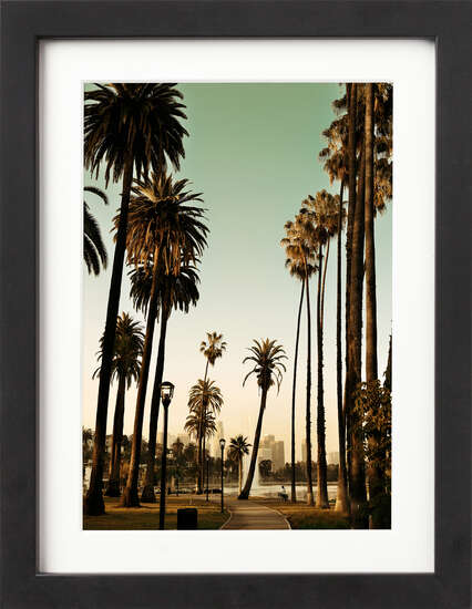 Los Angeles Palm Trees by Art Now Collection