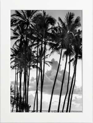 Peaceful Palms by Art Now Collection