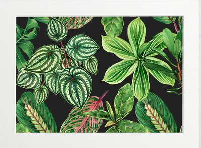 Exotic Leaf Array by Art Now Collection