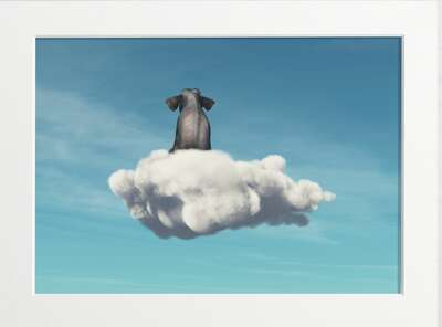 Elephant on a Cloud by Art Now Collection