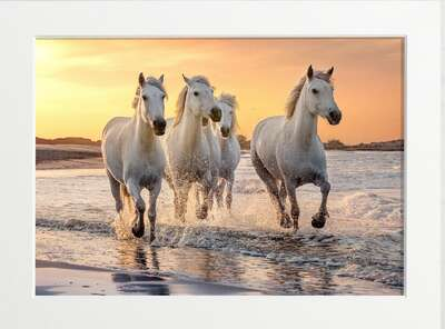 Horses galloping on the beach by Art Now Collection