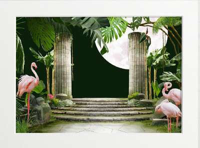 Flamingos and a Full Moon by Art Now Collection