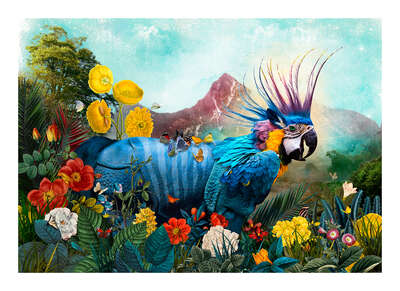 wall art wildlife prints animals  Psittaciformes Perissodactyla Paradeisos by Andre Sanchez
