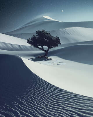 Landscape Wall Art: Desertnight by Benjamin Everett
