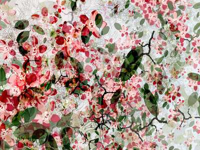 Wall Art: Cherry Blossom by Christine Jaschek