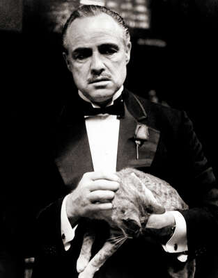 Marlon Brando in The Godfather by Classic Collection I