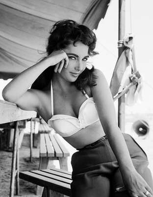 figurative art:  Elizabeth Taylor III by Frank Worth by Classic Collection I