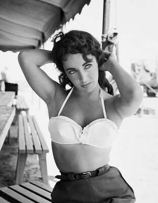 figurative art:  Elizabeth Taylor by Frank Worth by Classic Collection I