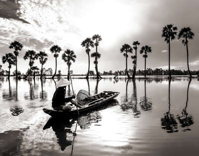 Mekong Delta by Classic Collection Ill