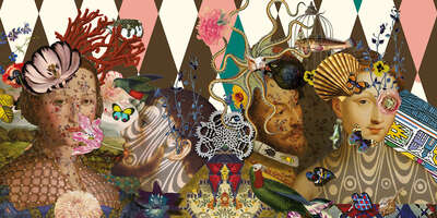 wall art wildlife prints animals  Curiosités by Christian Lacroix