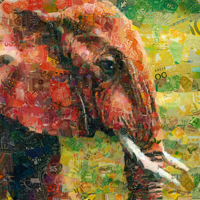 animal wall art:  Elephant by Charis Tsevis
