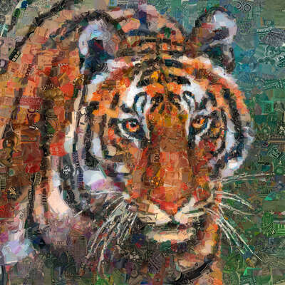 animal wall art:  Tiger by Charis Tsevis