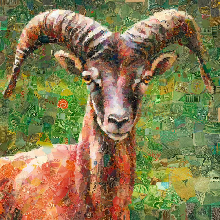 Mouflon by Charis Tsevis
