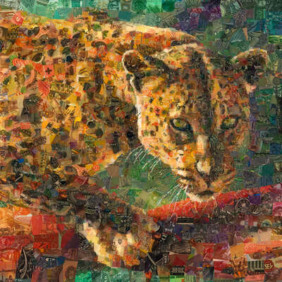 animal wall art:  Leopard by Charis Tsevis