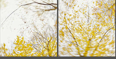 Curated abstract yellow artworks: pieces of autumn II by Carolin Wolf