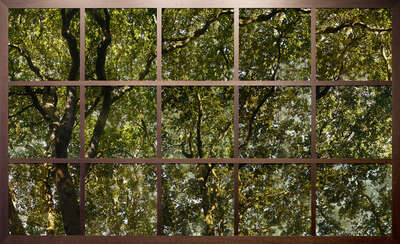 nature wall art: Treescape I by Christiane Zschommler