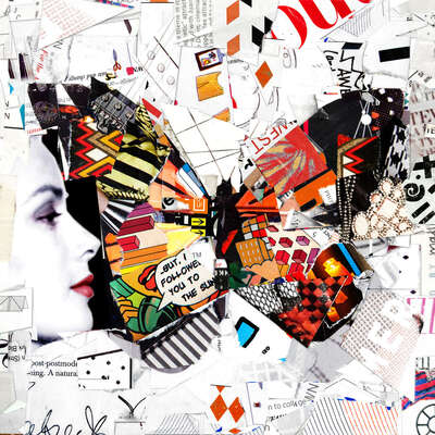 wall art wildlife prints animals  Flight by Derek Gores