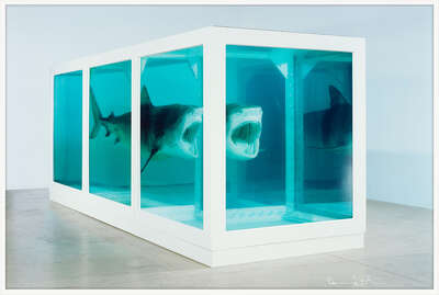 The Physical Impossibility of Death in the Mind of Someone Living von Damien Hirst