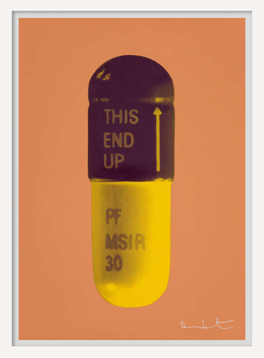 The Cure - Caramel/Grape/Mustard by Damien Hirst