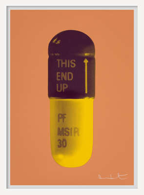 conceptual photography:  The Cure - Caramel/Grape/Mustard by Damien Hirst