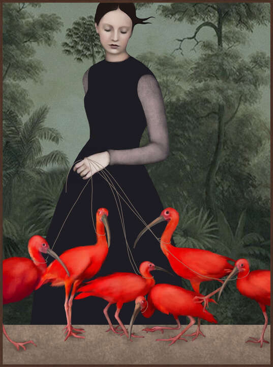 The Lady of the Ibis de Daria Petrilli