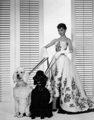curated black and white art: Sabrina Fairchild (Audrey Hepburn) by Billy Wilder
