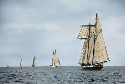 Schooners Racing on the Chesapeake Bay de Greg Pease