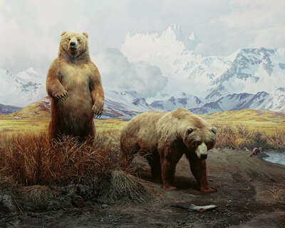 wall art wildlife prints animals  Diorama #3 by Henning Bock