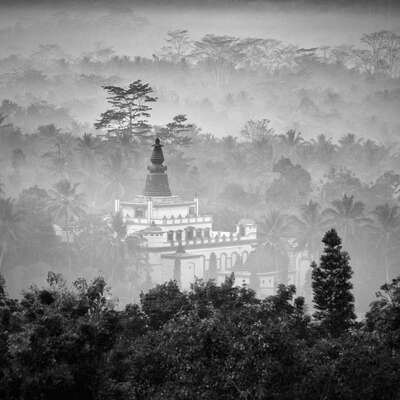 Black and White Photography: Nestle by Hengki Koentjoro