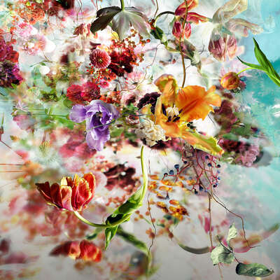 Flower Art Prints: Most Popular LUMAS Prints Lude Nº 11 by Isabelle Menin