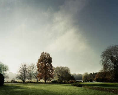 View of the lake in Autumn on St Giles House Park by Justin Barton