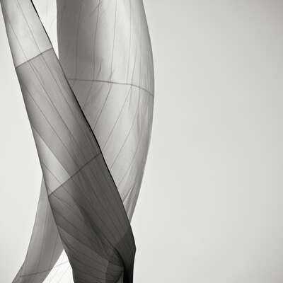 curated black and white art: Dancing Spinnaker by Jonathan Chritchley