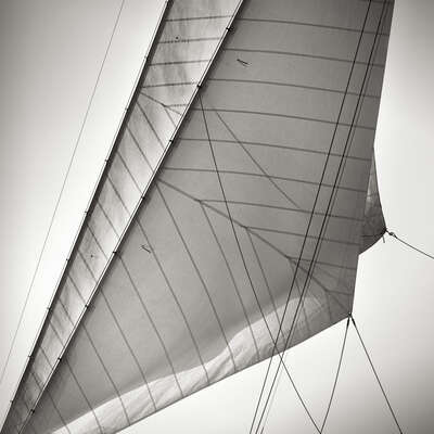 Sails of Rowdy by Jonathan Chritchley