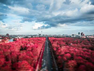 Curated red artworks: Panorama Berlin by Johannes Weinsheimer