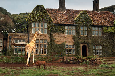 Surreal architecture and landscapes: Giraffe Manor #9 by Klaus Thymann