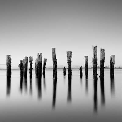 curated black and white art: Posts And Shadows by Michael Levin