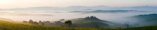 Panoramabild Landschaft: Pienza Yellow von Peter Adams