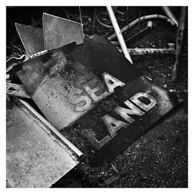 Sea/Land by Patrick J. Adams