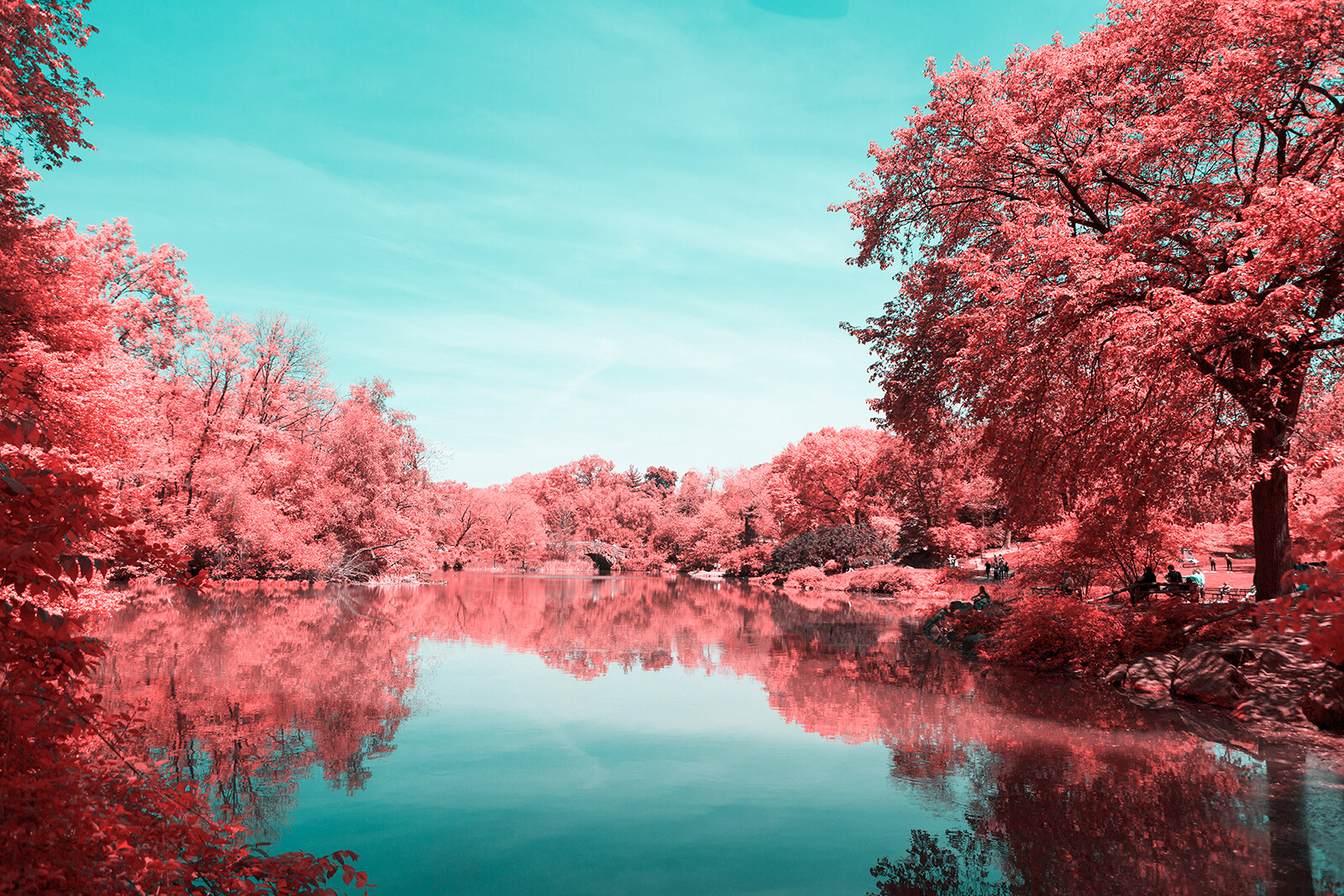 Infrared NYC III