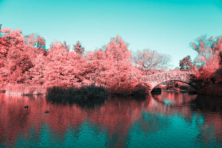 Infrared NYC V by Paolo Pettigiani